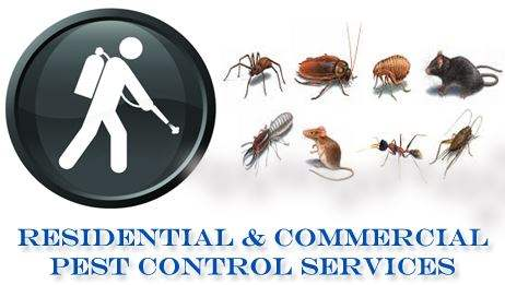 Residential-Commercial-Pest-Control-Services.jpg