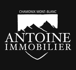 antoine-immobilier-logo.png
