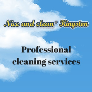 Professional cleaning services.JPG