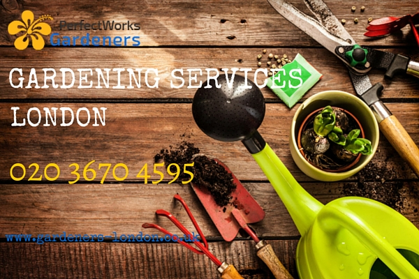 Gardening services London.jpg