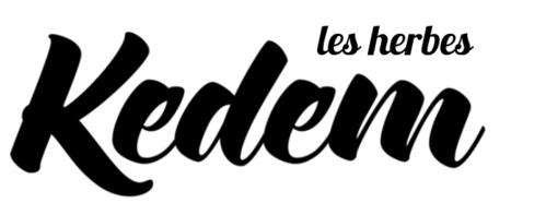 Kedem - Logo.png