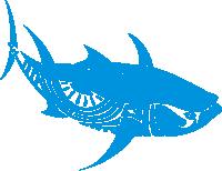 halkidki-game-fishing-tuna-cyan.png